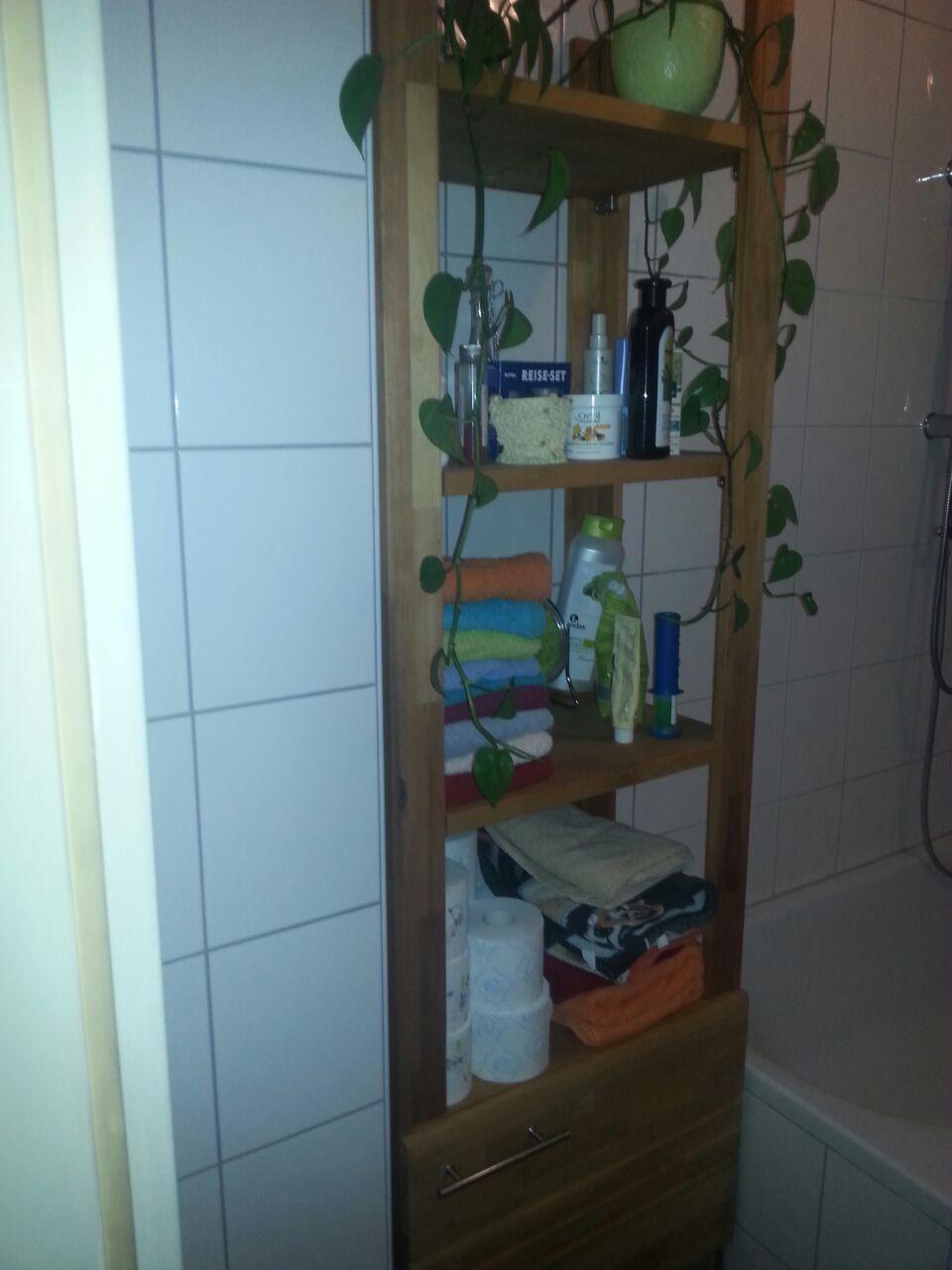 Platz in der kleinsten Ecke | DIY also einen Badschrank oder ...