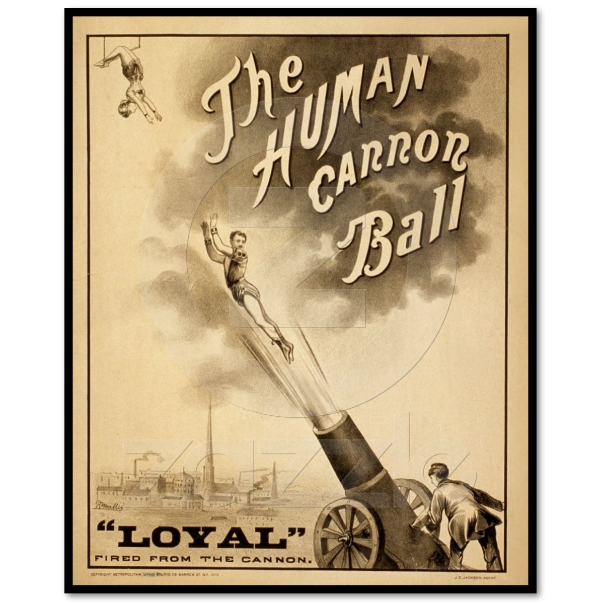 Vintage Circus Poster The Human Cannon Ball   Circus poster, Cannon ...
