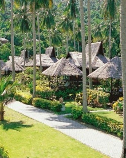 Ko Phi Phi Bungalows: Phi Phi Island Village Beach Resort (Thailand