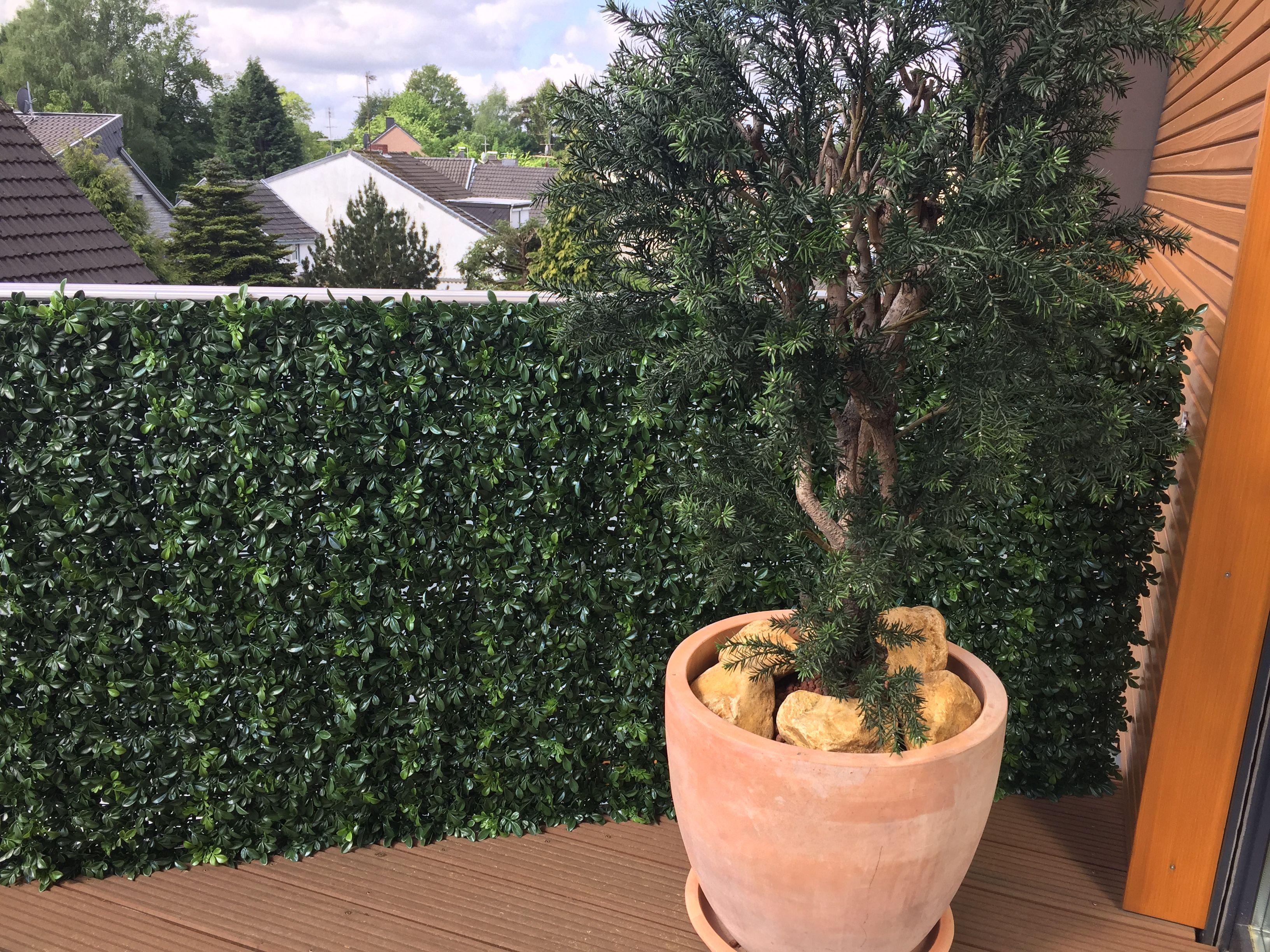 Kunstliche Hecke Buchshecke Bellaplanta Sichtschutz Wetterfest Balkongestaltung Massanfertigung Aussenbereich Garten Kunstpflanzen Pflanzen Garten