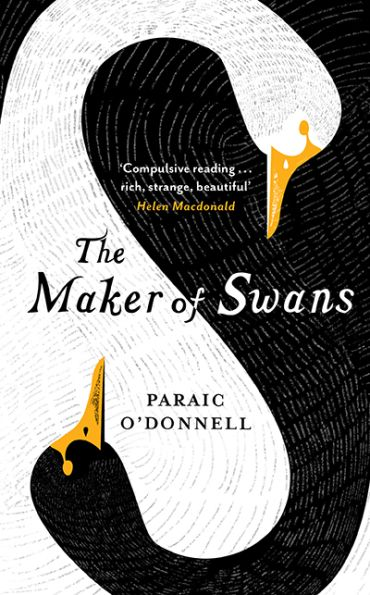 maker of swans by paraic o donnell book cover by sinem erkas