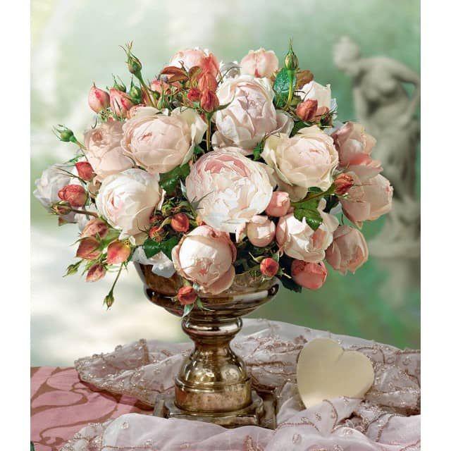 Rose der Liebe \u0027Madame Figaro®\u0027, 1 Pflanze - BALDUR-Garten GmbH
