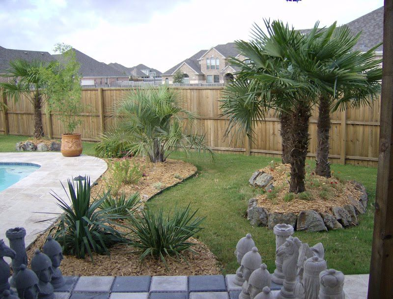 Charming outdoor swimming pool design with palm tree for Landscaping ideas for pool areas