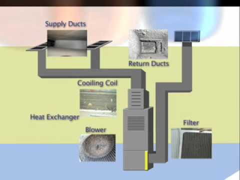 Ductwork Mold Health Biotoxin Journey Duct Work Heating