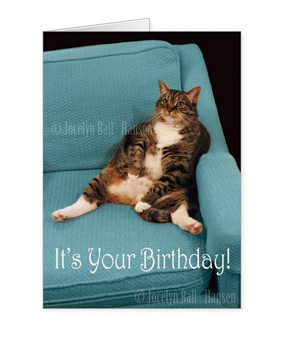 Big Fat Tabby Cat Funny Birthday Greeting Card Cat By Artbyjocelyn