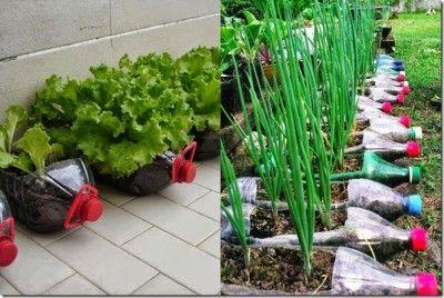 como hacer un huerto con materiales reciclados