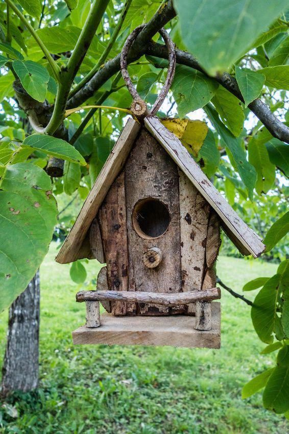 Want To Make Birdhouse By Your Self Do It Now birdhouse
