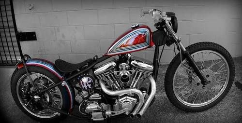 RE-PIN THIS!!! http://www.cardosystems.com/   Harley Twin Cam bobber