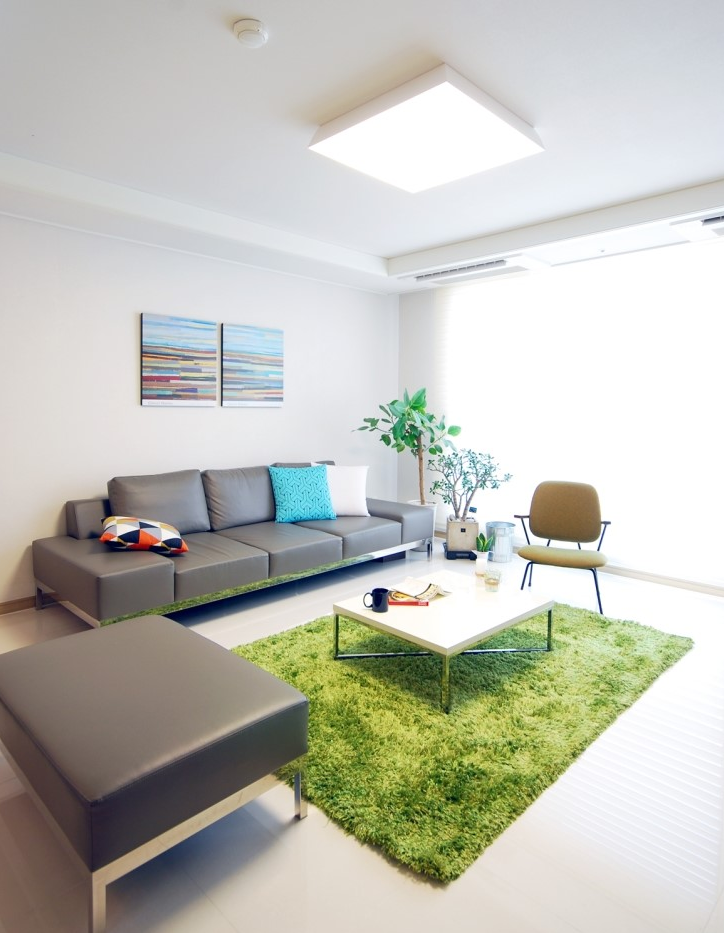 grey couch with a green carpet Green rug living room
