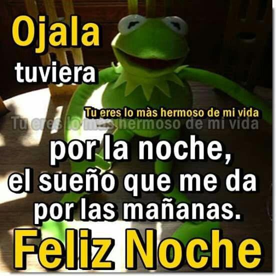 Ojala Tuviera Latinas Quotes Funny Memes Humor