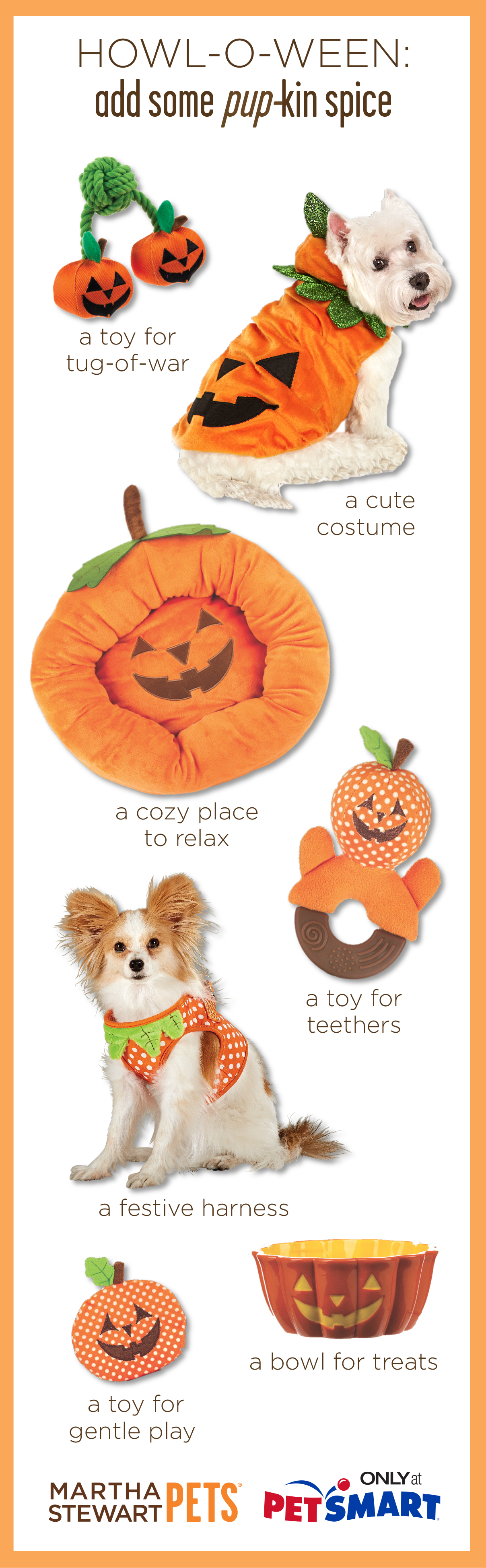 Add some #pupkin spice to your dog's life with some #marthastewartpets…