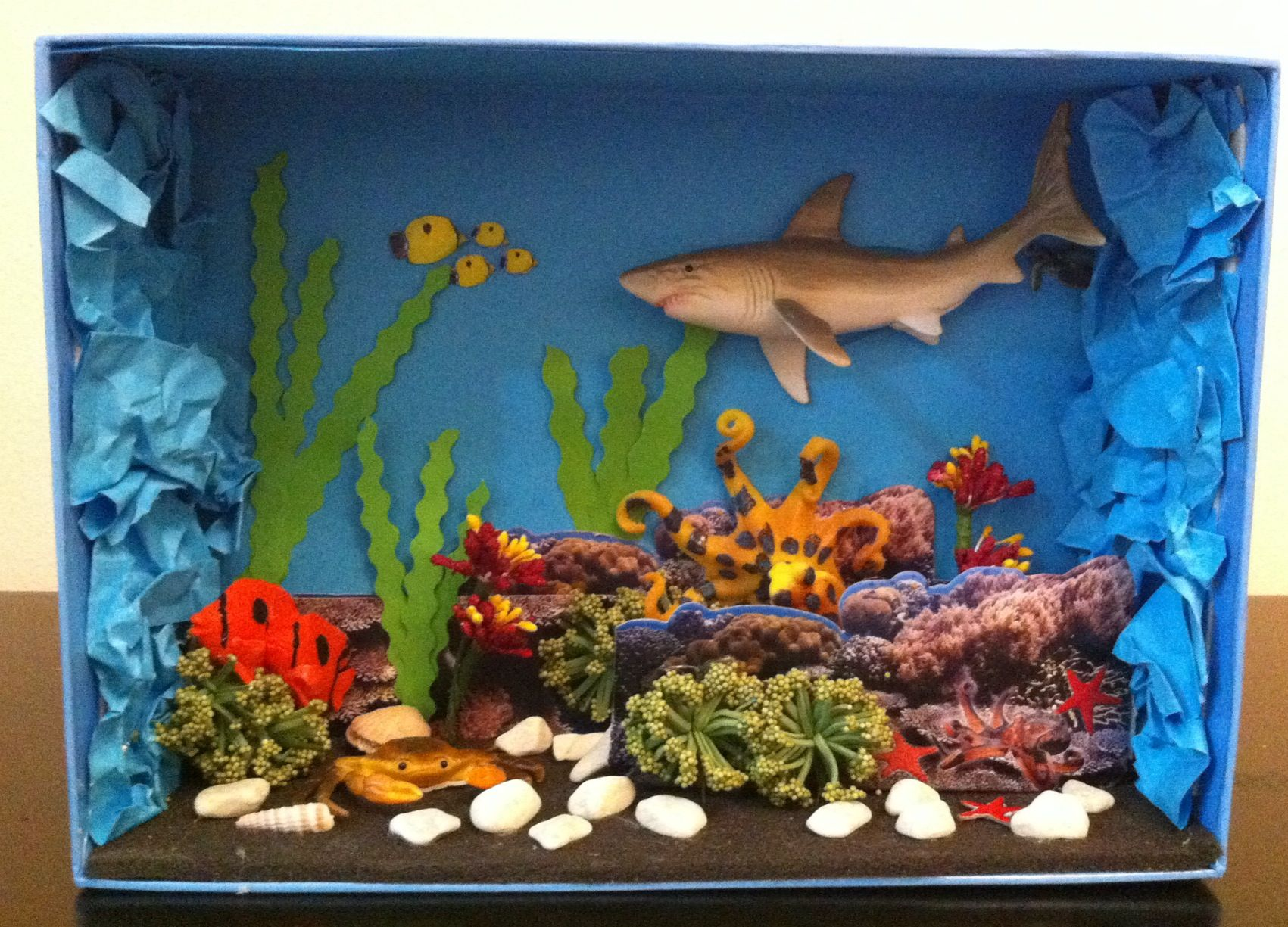 my mini diy deep sea view for my daughters science