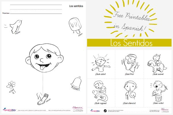 Monarca Language shared these cute, educational activity sheets for ...