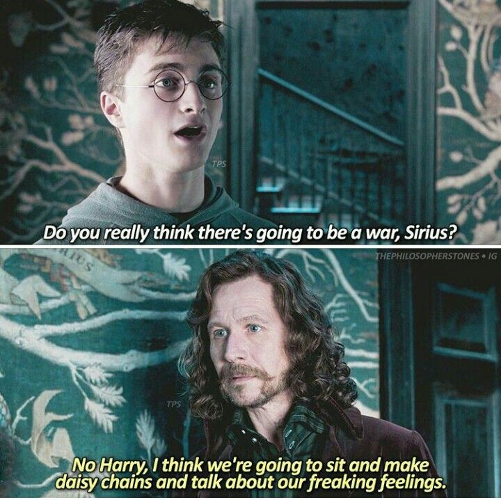 Siriusly Sirius Harry Potter Love Harry Potter Ravenclaw Harry Potter Movies