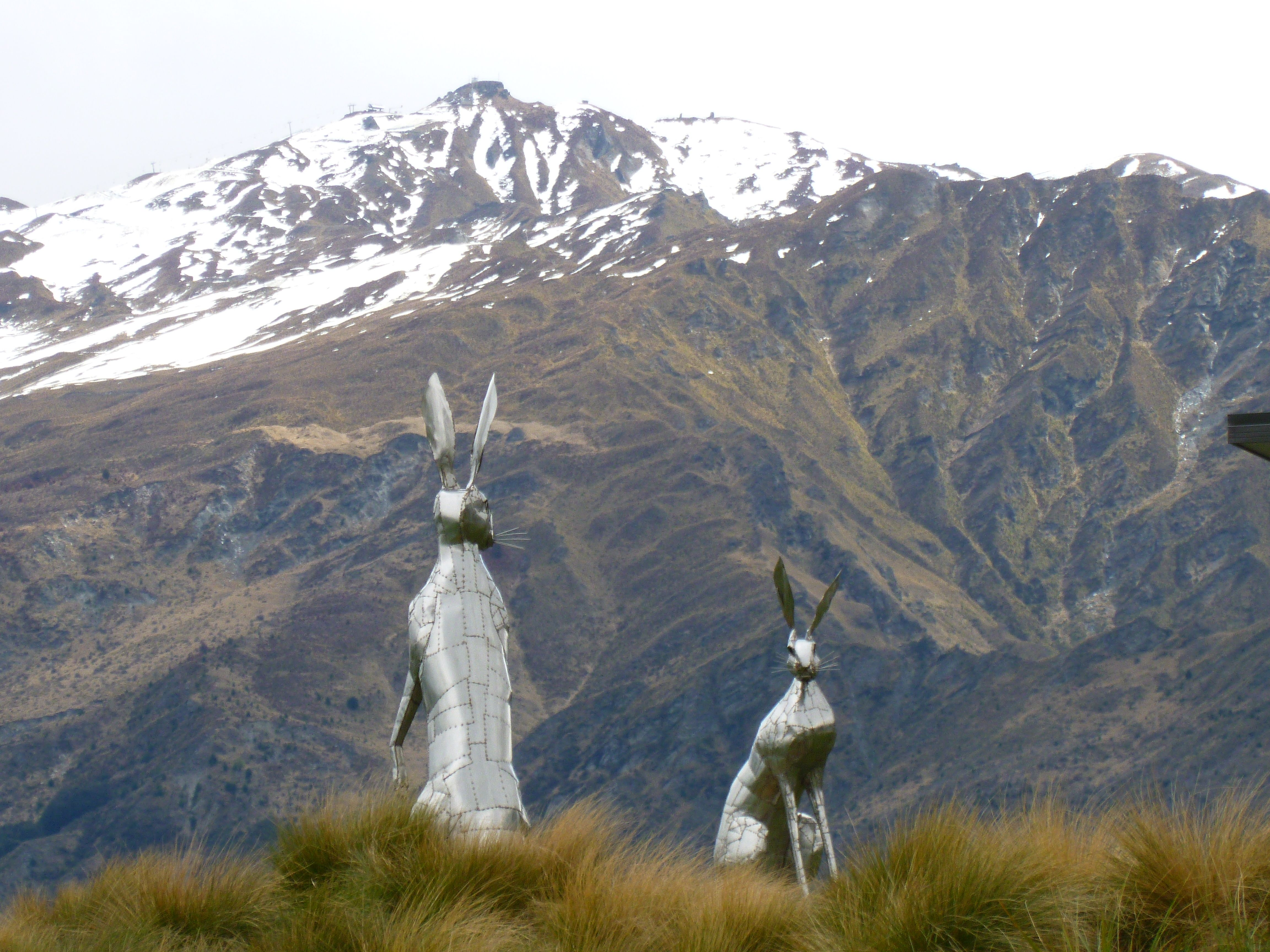 Two stainless steel Hare commissions. Lake Hayes, Queenstown NZ made by Michelle Clarke ,NZ.