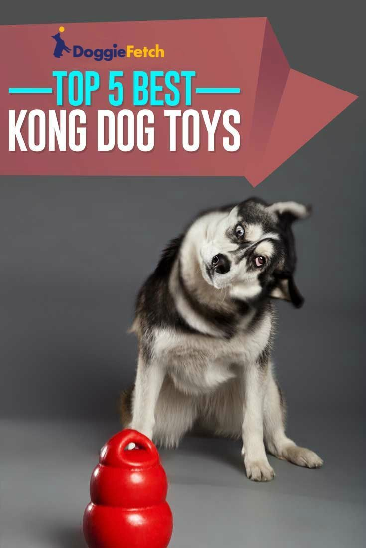 Cheap Dog Toys 5 Best Toys For Dogs Around 10 In 2017 Kong Dog