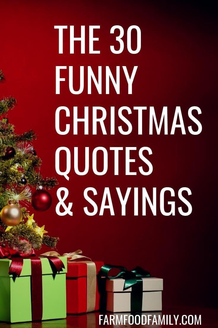 30 Funny Christmas Quotes Sayings That Make You Laugh Christmas Quotes Funny Holiday Quotes Funny Witty Christmas Quotes