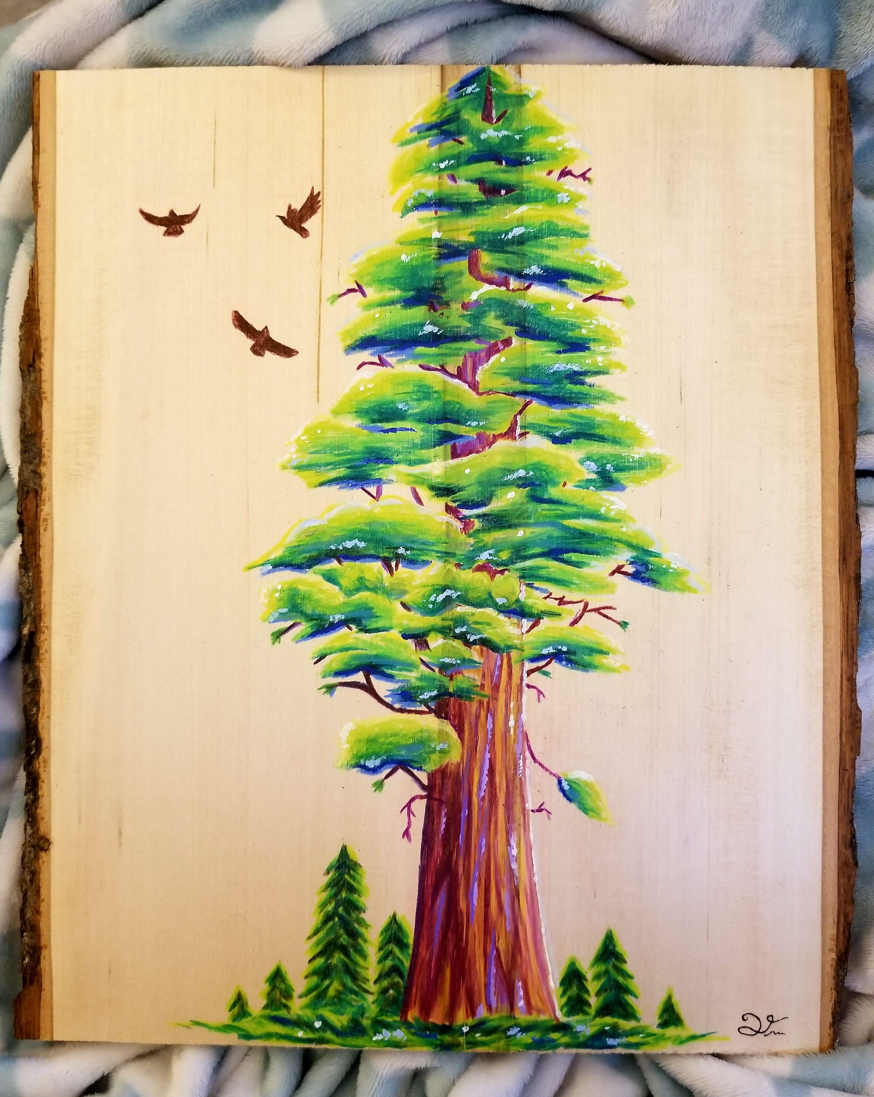 Redwood Tree colored pencil and acrylic on wood 10x14 | Art ...