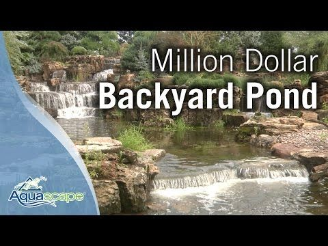 This Is What a Million Dollar Backyard Pond Looks Like ...