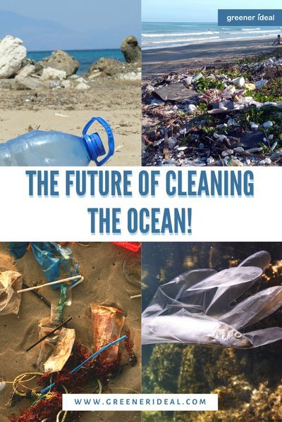 The ocean is a beautiful place that houses a lot of the world's wildlife and crucial to our everyday lives. Unfortunately, our ocean has long been a victim of pollution and waste. Plastics and microplastics are major contaminants in the ocean but improper waste removal is the biggest culprit of our polluted oceans and communities. #Environment #MarineLife #WildLife #Microplastic #Ocean #PlasticBottles #PlasticPollution #RaisingSeaLevel #Trash #WaterPollution #PlasticFree #Zerowaste #Ecofriendly