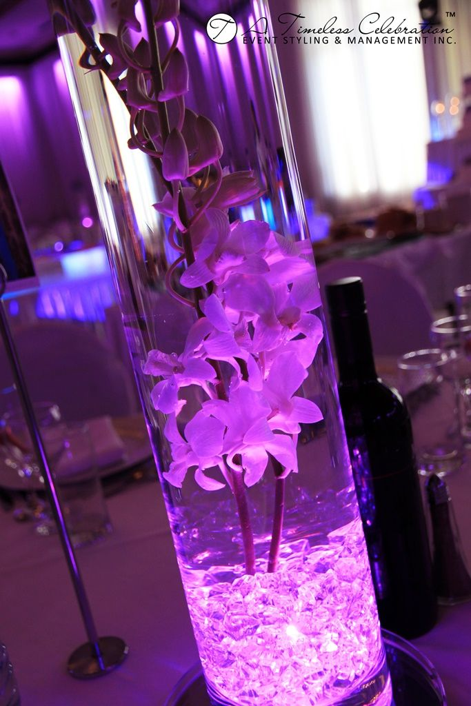 Modern Wedding Flower Centerpiece Purple Hydrangeas White Dendrobium Orchids in Tall Light Up Cylinder Vase | A Timeless Celebration Montreal Florist & Modern Wedding Flower Centerpiece: Purple Hydrangeas White ...