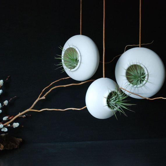 anstatt eines gem ldes kann man auch pflanzen aufh ngen zaubern ein tolles flair pflanzen. Black Bedroom Furniture Sets. Home Design Ideas