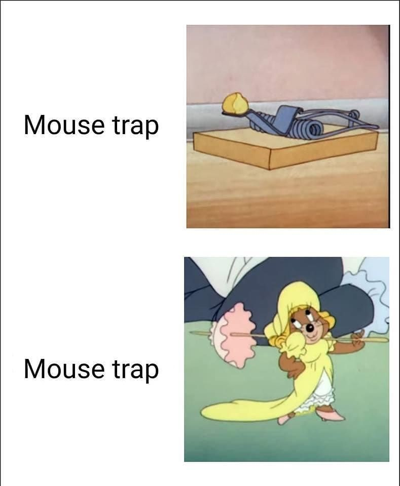 Oh Mouse Trap Very Funny Pictures Funny Images Funny