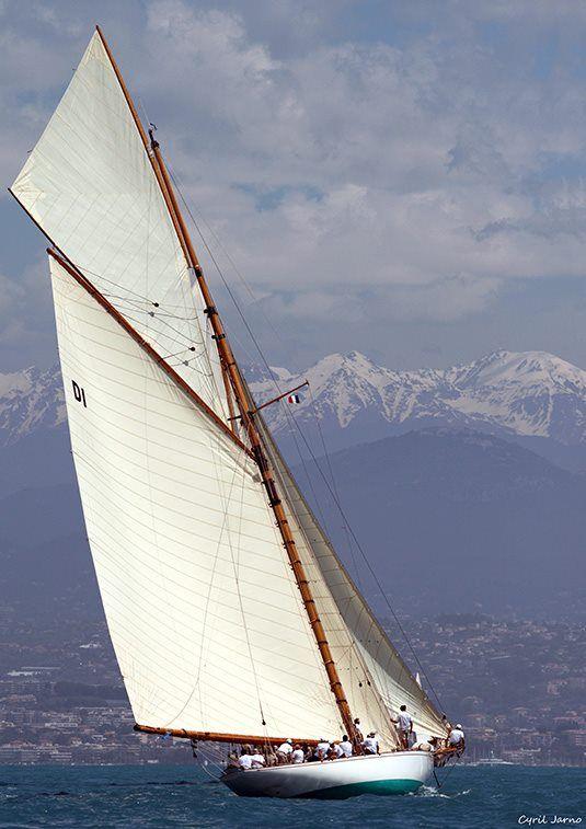 Les Voiles D Antibes Sailing Boat Sailing Vessel