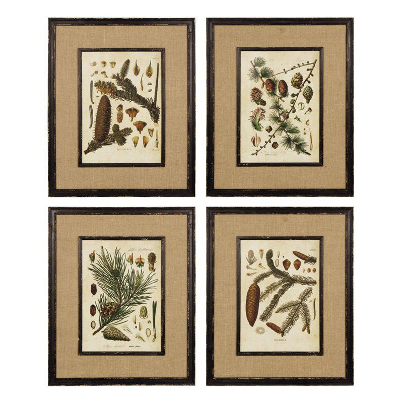 Napa Home and Garden Framed Forestry Print Wall Panel