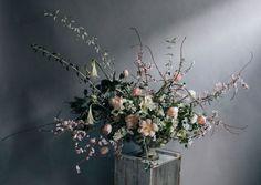 Wild Arrangements / Jo Flowers (instagram @the_lane)