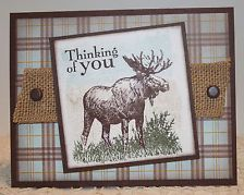 Masculine Greeting Cards x4 Completed Lot/Kit ~ Stampin Up Walk in the Wild
