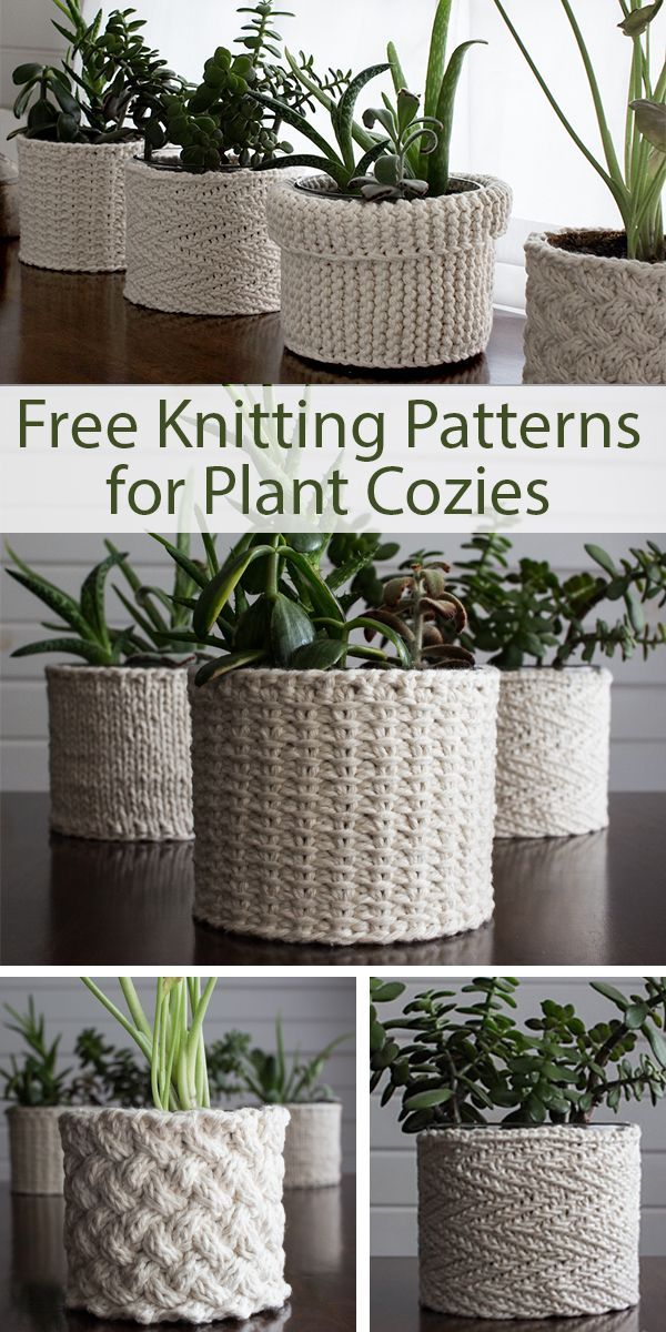 Free Knitting Patterns for Plant Cozies - Welcome to Blog