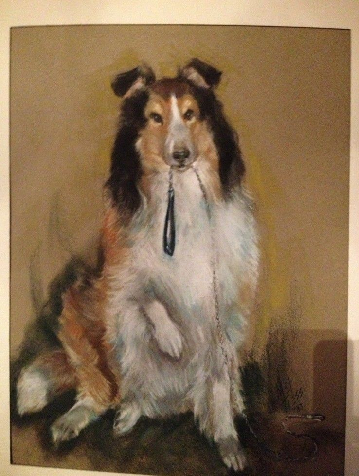 PASTEL COLLIE DOG PAINTING Tiess 1984 Signed Unframed