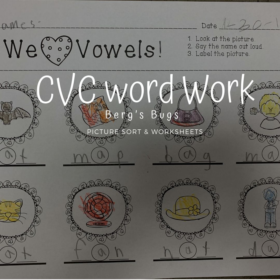 Vowel Picture Card Sort And Worksheets Medial Sounds