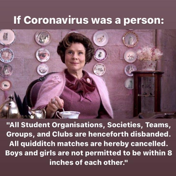 Whatsapp Group Funny Harry Potter Memes Hilarious Harry Potter Jokes Harry Potter Memes