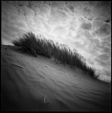 "Saatchi Art Artist Paul Cooklin; Photography, ""Edition 1/10 - Sand Dune I, Croyde Bay, North Devon"" #art"
