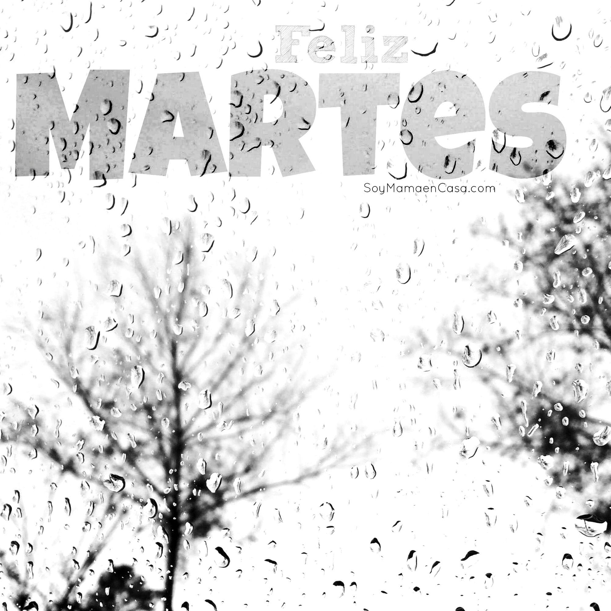 Hola, hoy tenemos gotas de #lluvia, feliz #Martes #Tuesday www ...