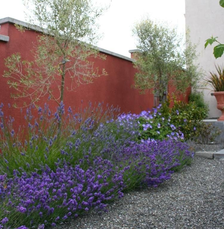 Aménagement de jardin méditerranéen \u2013 plantes et fleurs Gardens - mettre du gravier dans son jardin