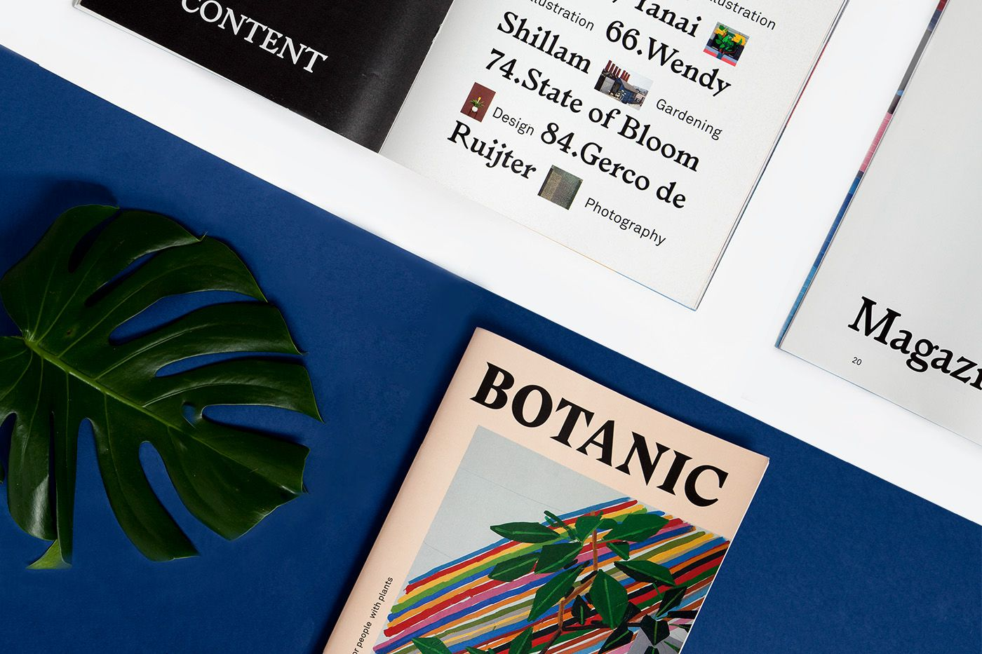 BOTANIC is a new magazine about plants with people or