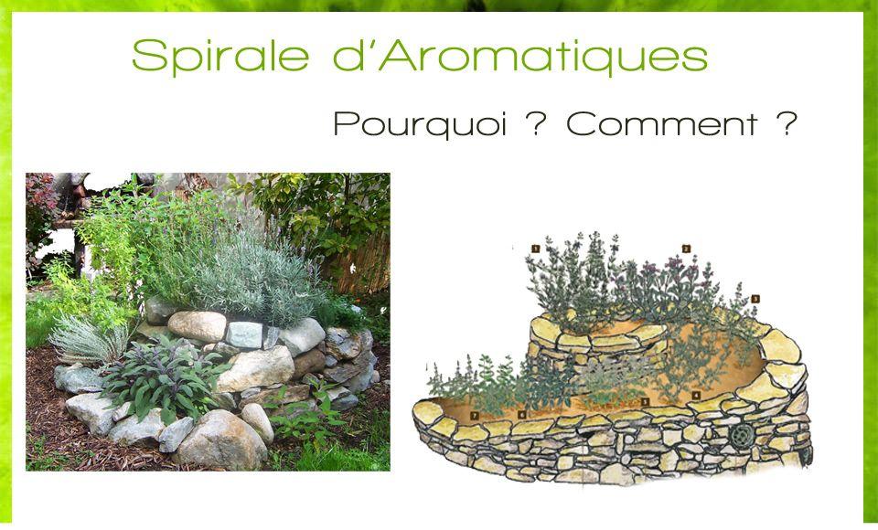 la spirale d 39 aromatiques l 39 exemple de permaculture potager pinterest