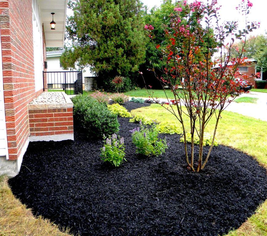 pin sara arnold backyard