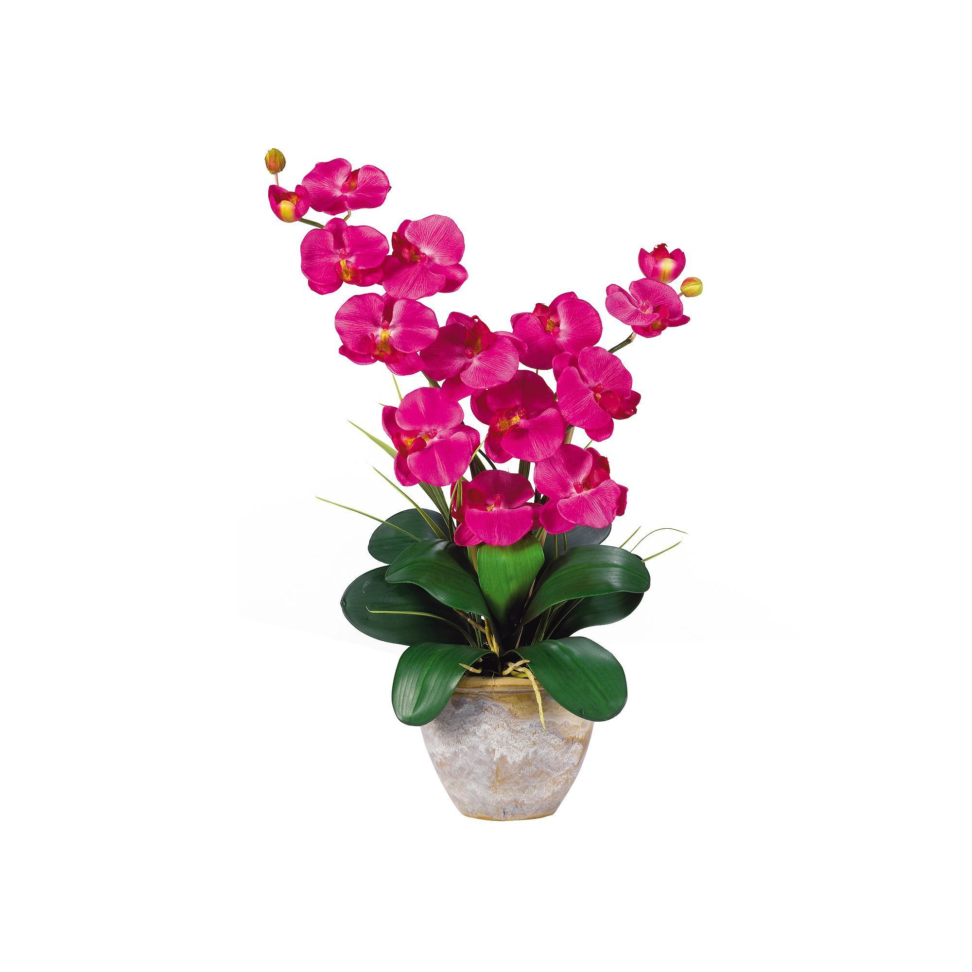 Nearly Natural Silk Phalaenopsis Orchid Arrangement Multicolor