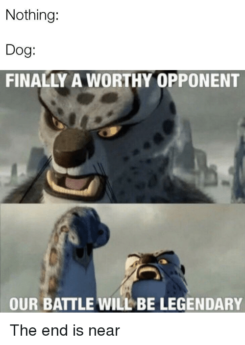 The Best Of Our Battle Will Be Legendary Memes Funny Pictures Memes Hilarious