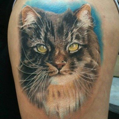 Alexandr Cormacov Google Search Cute Cat Tattoo Cat Tattoo Designs Cat Tattoo