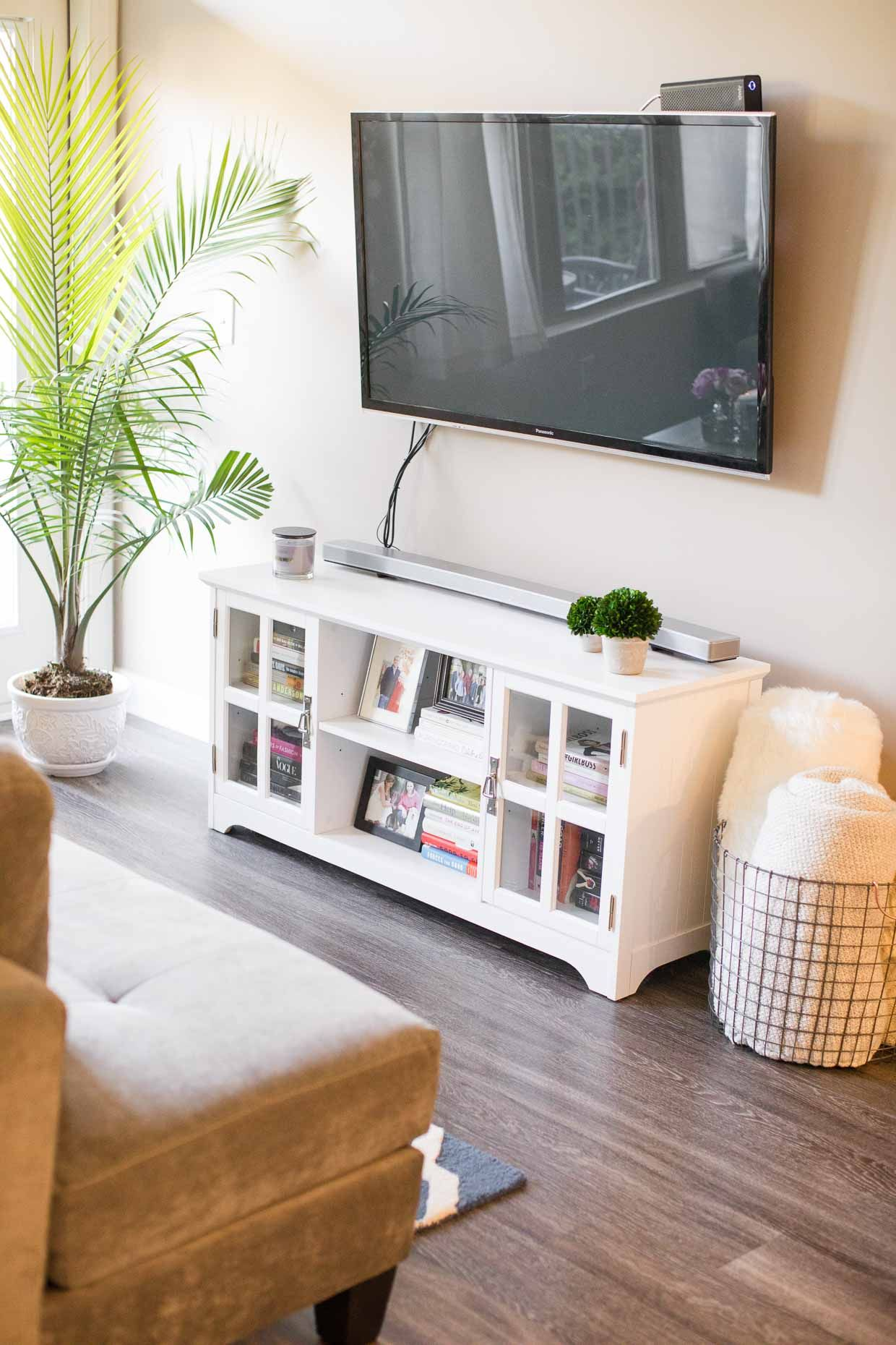 Atlanta apartment tour affordable home decor inspiration media center and that plant in corner