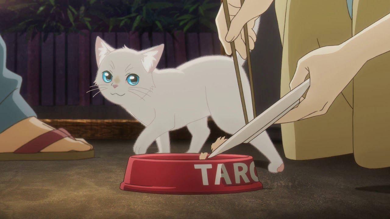 Pin On Studio Ghibli And More