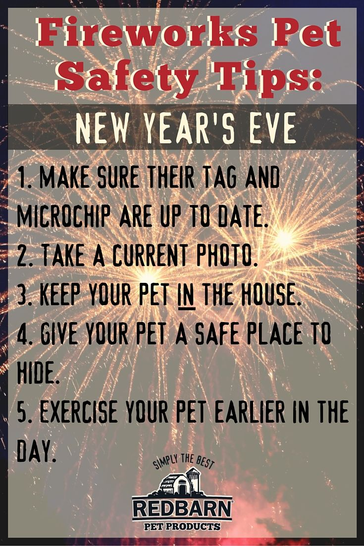 New Years Eve Staying In