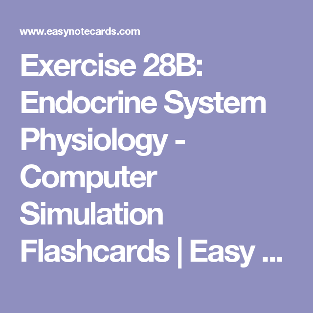 Exercise 28B: Endocrine System Physiology - Computer Simulation ...