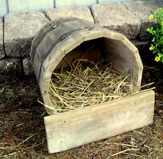 Nesting Wild Mallards In My Backyard Pool: Thinking Of Making This Nesting Box For Our Duck Friends