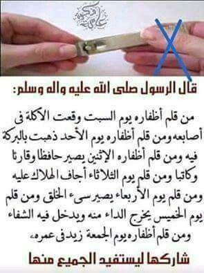 أوقات تقليم الأظافر Islamic Inspirational Quotes Islamic Love Quotes Islamic Phrases